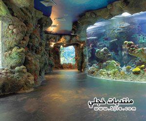 مشروع سياحي مائي كورنيش fakieh