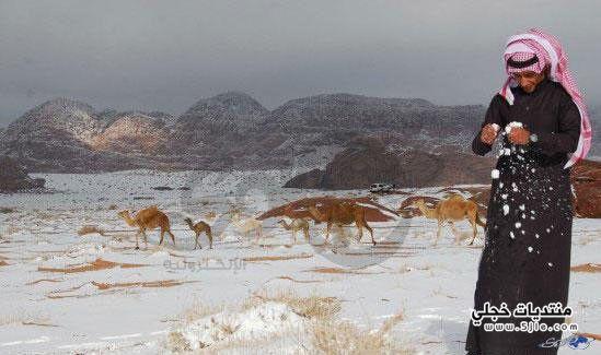 ثلوج جبال اللوز شمال تبوك