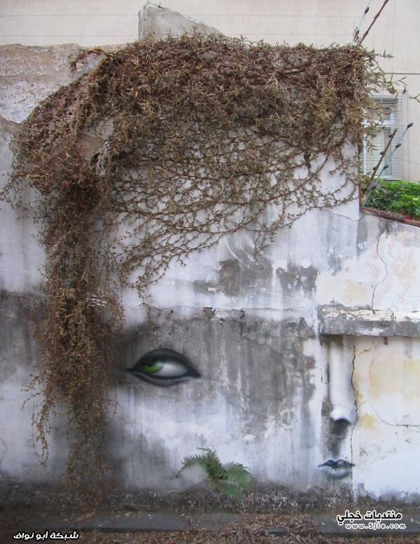 رسام برازيلي 2013 رسام برازيلي