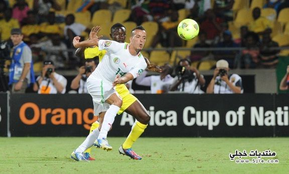 الجزائر تودع بطولة افريقيا 2013