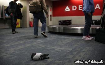 اسوء مطارات العالم اسوء مطار