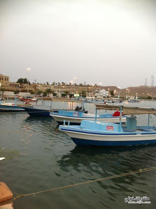 امطار محافظة ضباء 1434 امطار
