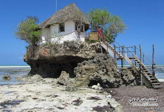 مطعم الصخرة زنجبار معلومات مطعم