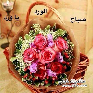 صباح الخير 2014