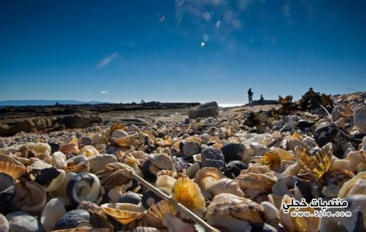شاطئ الصدف اسبانيا شاطئ الصدف