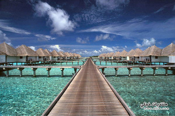 جزيرة مالديف 2014 جزيرة مالديف