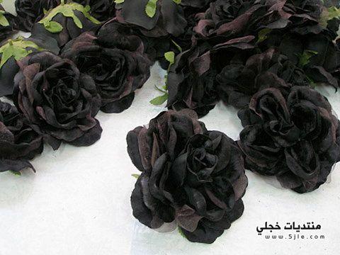 الوردة السوداء صورة الوردة السوداء
