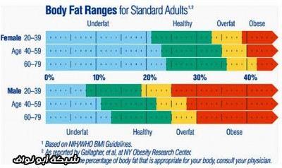 معلومات الدهون حقائق الدهون اسرار