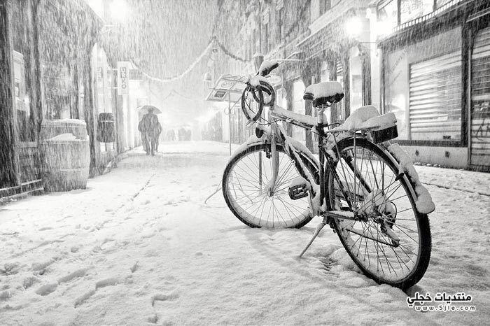 الشتاء وجماله