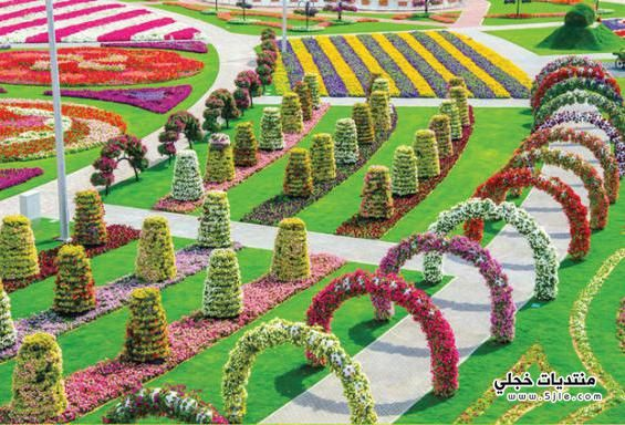 اكبر حديقة زهور العالم Dubai