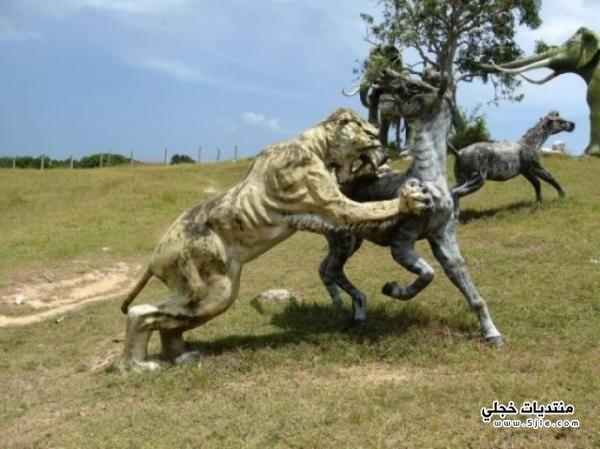 حديقة الديناصورات كوبا حديقة الديناصورات