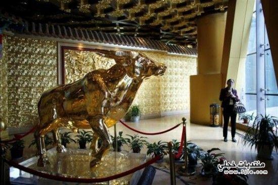 اغنى قريه الصين 2013 اغنى