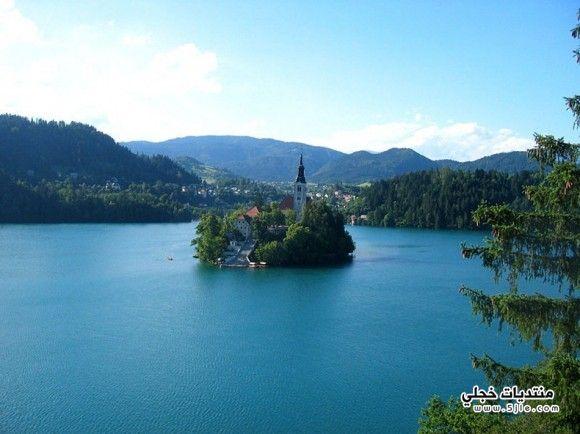 الجزيرة الوحيدة سلوفينيا 2014 جزيرة