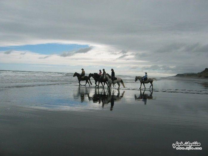 السياحه نيوزلندا الاماكن السياحيه نيوزلندا