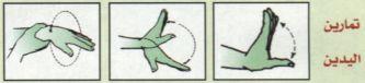 الدليل الصحي الطائرة نصائح طبية
