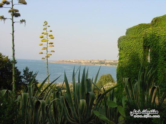 جزيرة صقليه 2014 جزيرة صقليه