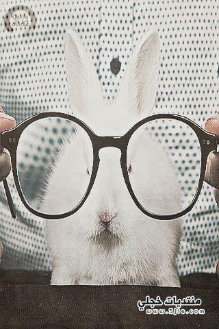 خلفيات للجالكسي نظارات خلفيات مميزه