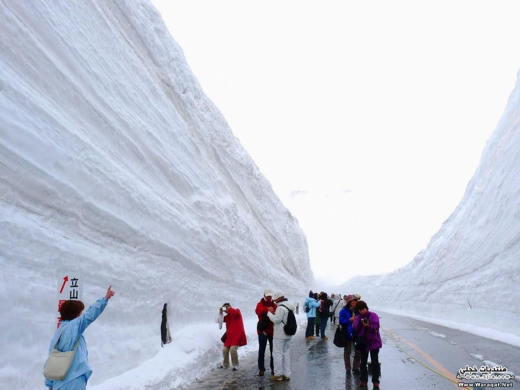 طريق تاتيياما كوروبي اليابان طريق