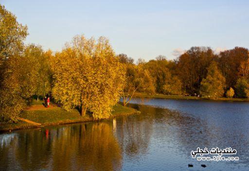 خريف موسكو الذهبى 2014 موسكو