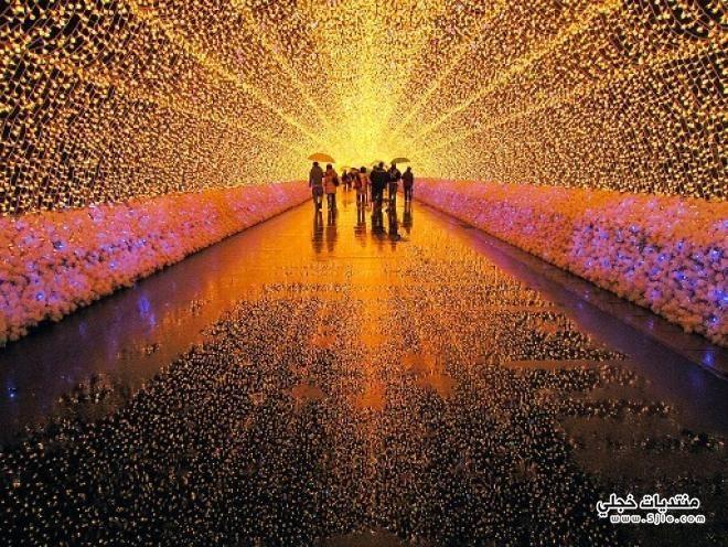 مهرجان الأضواء جزيرة ناغاشيما 2013