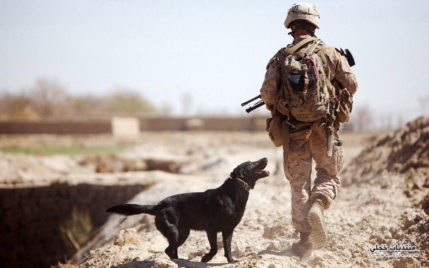 عسكرية افضل عسكرية اجمل عسكرية