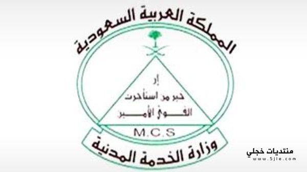 وزارة الخدمة المدنية للقضاء التراكم