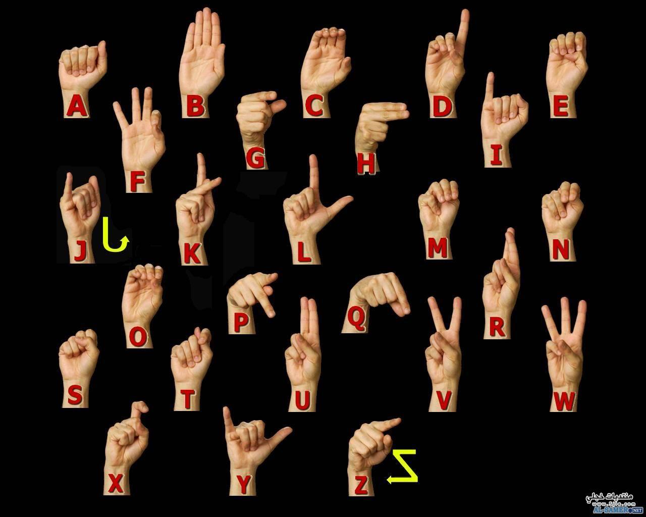 الحروف بلغة الاشارة الحروف الانجليزية