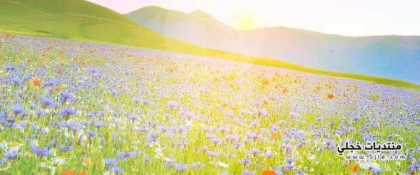 الربيع 1438