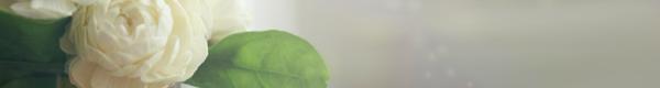 خلفيات 2014 هيدرات للماسنجر 2014