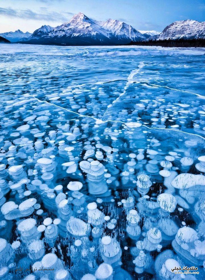 بحيرة الفقاعات المتجمدة2013 بحيرة ابراهام