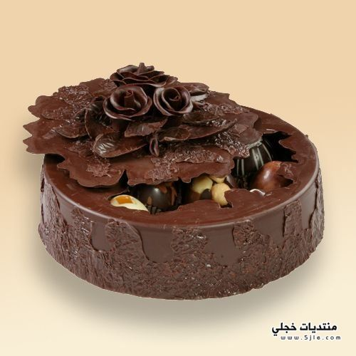 احلى شوكولاتة بأشكال غريبة2013 انواع