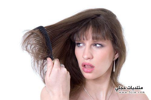 ماهى اسباب جفاف الشعر 2013