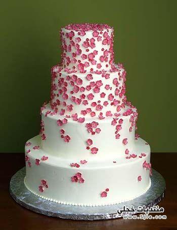 دليل عروس 2014 كامل لتجهيز
