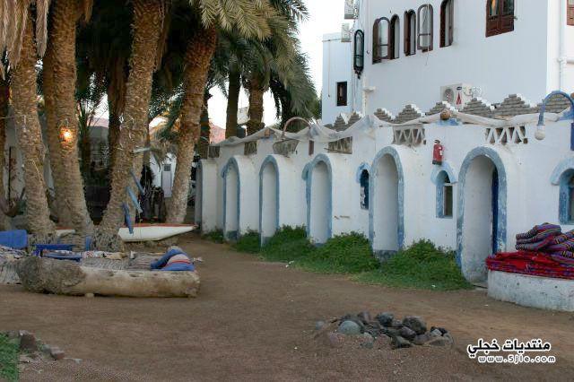 الحبيبة 2013 سياحية مدينة المصرية