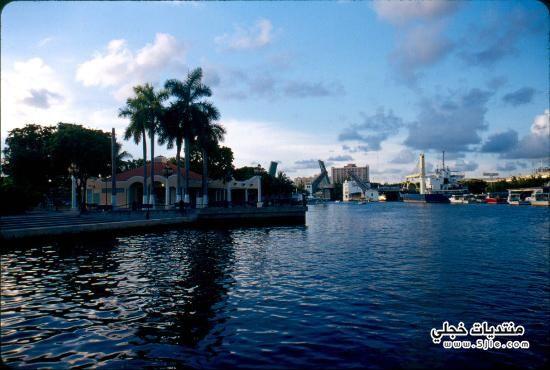 ولاية فلوريدا 2014 2014 Florida