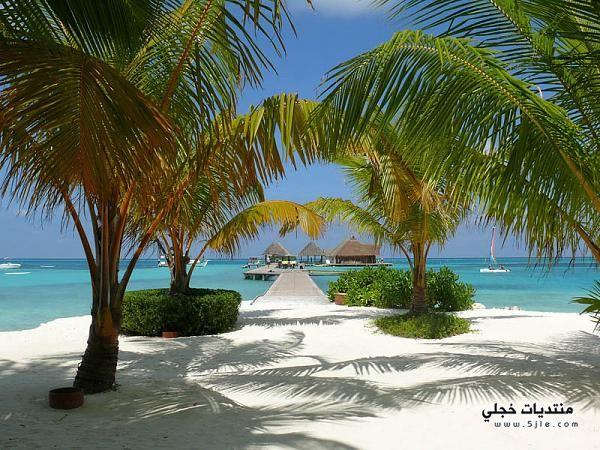 السياحه المالديف 2013 المالديف 2014