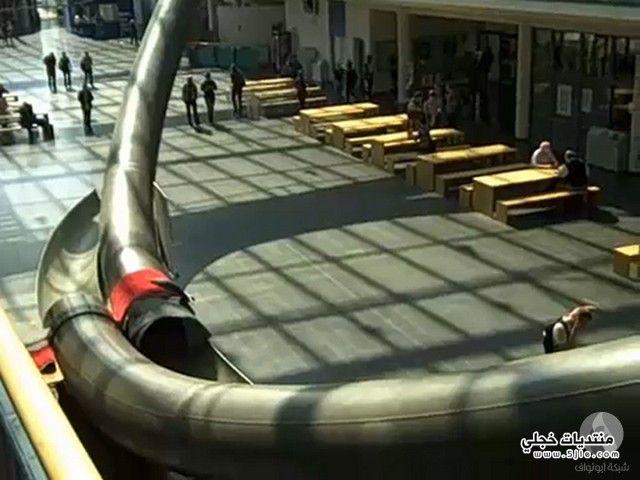 زحليقة جامعة ميونخ زحليقة جامعة