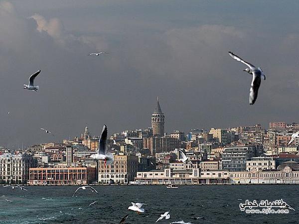 السياحه اسطنبول 2013 سياحيه اسطنبول