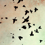 رمزيات طفوله 2013 رمزيات تهبل