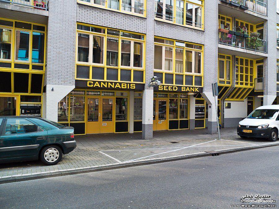 امستردام Amsterdam مدينة امستردام امستردام