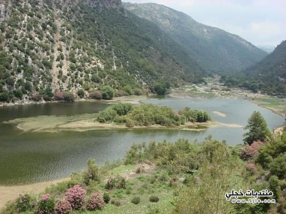 السياحة الوطن العربي 2013 احدث