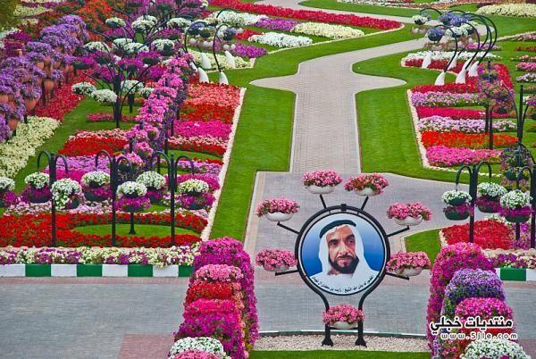 اجمل حديقه بالامارات 2014 حديقه