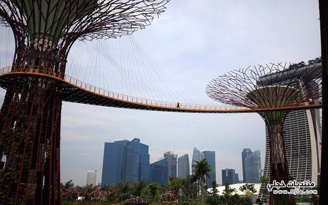 احدث حدائق سنغافورة 2014 حدائق