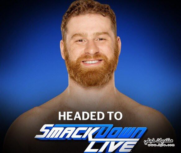 السيرة الذاتية للمصارع سامي