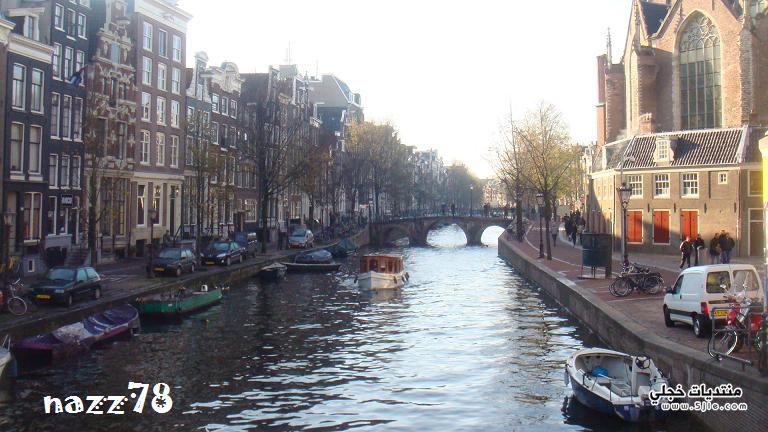 هولندا 2015 هولندا الزهور 2014
