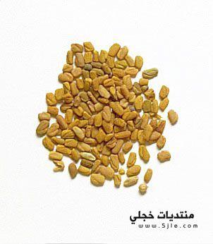فوائد الحلبة للنفاس اكلات للنفاس
