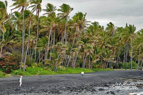 بيوناليو شاطئ الرمال السوداء شاطئ