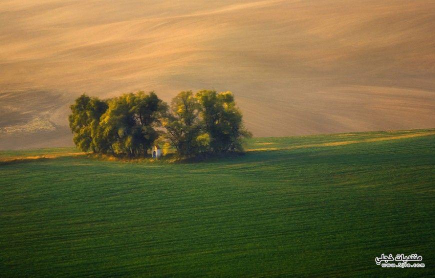 حقول التشيك 2014 السياحة التشيك