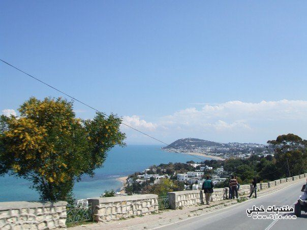 مدينه المرسى الجمال سياحيه تونس