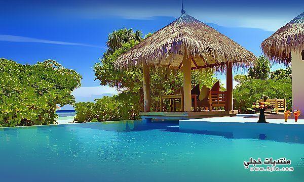 جزيرة الأمراء جزيرة الأمراء السياحة